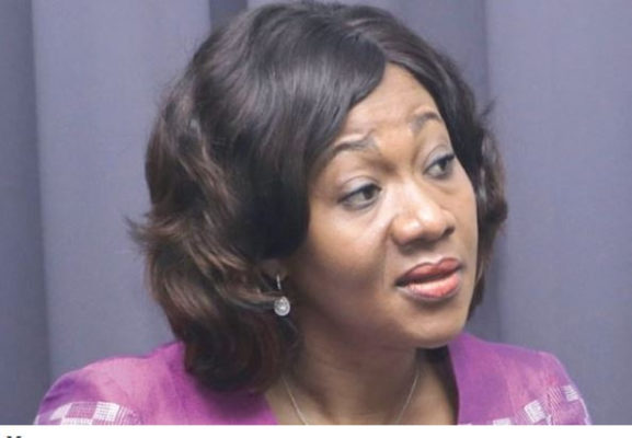 We inherited a weak institution - EC boss